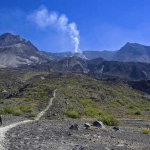 Mount St. Helens Experience $ 246.60