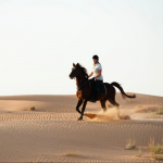 "Desert horse riding $110 <a href=""http://www.xe.com/currencyconverter/convert/?Amount=270&From=USD&To=EUR"" target=""_blank""><img src=""/wp-content/uploads/2017/07/currency_exchange_icon.png"" title=""other currency""></a>"