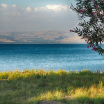 "<img src=""https://www.booqify.com/wp-content/uploads/2017/04/booqify-logo-green-50.png"" title=""1 A virtual tour Sea Of Galilee Holy sites""> Virtual tour Sea Of Galilee Holy sites</a>"